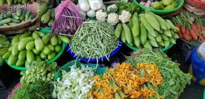 Le verdure e l'intestino